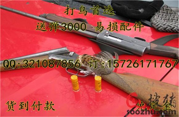 枪木托尺寸_气筒枪做法