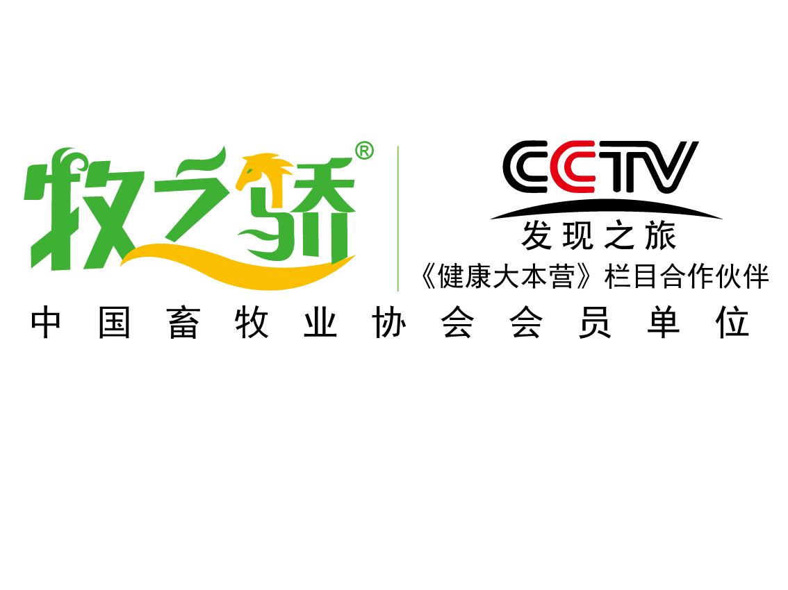 cctv1黄金剧场2003-2005年之间播过的电视剧      《亮
