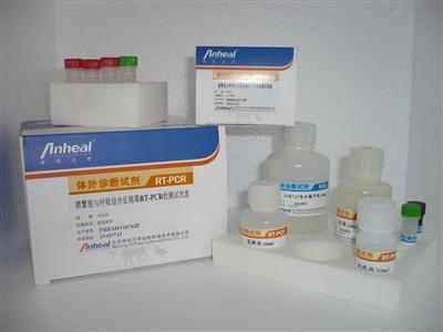 北京世纪元亨动物防疫技术有限公司诊实时荧光pcr断试剂盒目录表