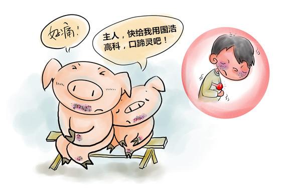猪五号病特效药免费试用