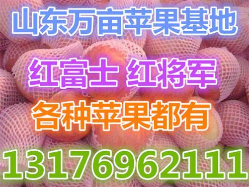 纸包生猪-猪价行情|食品加工|搜猪网_中国皮蛋供求无铅生猪图片